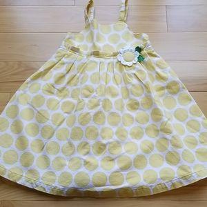 Gymboree Pop of Daisies 5T yellow polka dot dress
